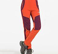 abordables -Femme Pantalons de Randonnée Pantalons Softshell Hiver Extérieur Chaud Etanche Coupe Vent Doublure Polaire Coquille Souple Pantalons / Surpantalons Bas Vert Véronèse Rouge Bordeaux Orange Camping