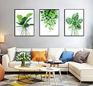 economico -Stampe con cornice Set incorniciato - Botanica Floreale / Botanico Polistirolo Foto Decorazioni da parete