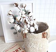 abordables -véritable branche de coton décoration de la maison plante de mariage ins fleur sèche à l'air mur de mariage