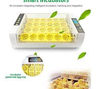 economico -LITBest 24 Eggs Incubator Plastica e metallo Bianco