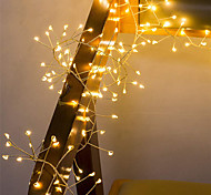 economico -2m Fili luminosi 100 LED 1pc Bianco caldo San Valentino Natale Feste Decorativo Decorazione di nozze di Natale Batterie alimentate