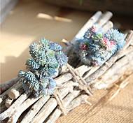 abordables -20.5 cm en caoutchouc souple riz succulentes succulentes mori femelle à la main fausse fleur 1 bâton