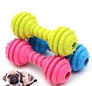 abordables -Jouets de mastication Jouet pour chien Chien Chat Jouet de mise au point Caoutchouc Cadeau Jouet pour animaux de compagnie Jeu d'animaux