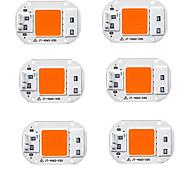 abordables -6 pièces 20 W 1500 lm 1 Perles LED Spectre complet Lampes Horticoles LED 220-240 V 110-120 V Serre de légumes