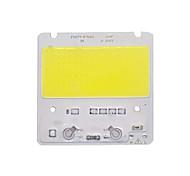 abordables -led cob puce led lumière 110v 220v 50w blanc chaud blanc intelligent ic pas besoin de pilote smd perles de lumière pour projecteur projecteur lampe extérieure diy éclairage 1pc