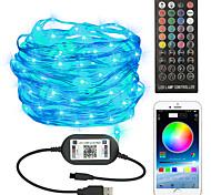 economico -luci stringa led controllo app controllo vocale 20 m 10 m 5 m 50 led el con telecomando 2 pz 1 pz cambia colore per le vacanze di natale impermeabile decorazione esterna alimentato usb