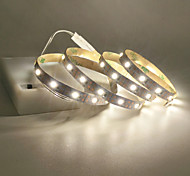 economico -1m 2m 3m 4m 5m strisce luminose a led interfaccia usb o batteria aa alimentatore flessibile 2835 smd per metro 60 led 8mm bianco caldo bianco freddo 5v striscia luminosa a led