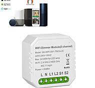 economico -modulo interruttore dimmer wifi controller interruttore a pannello doppio interruttore a 2 vie dispositivo di controllo indipendente on-off 86 scatole