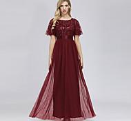 abordables -Trapèze Empire Elégant Vêtements de fête robe ceremonie Robe Bijoux Manches Courtes Longueur Sol Tulle avec Broderie 2021 / Gigot / Ballon