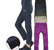 abordables -Femme Pantalons de Randonnée Pantalons Softshell Hiver Extérieur Chaud Coupe Vent Respirable Extensible Elasthanne Pantalons / Surpantalons Bas Noir Violet Vert olive Gris Camping / Randonnée Chasse