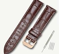 economico -vera pelle / Pelle / Pelo di vitello Cinturino per orologio  Nero / Marrone 17 cm / 6,69 pollici / 18 cm / 7 pollici / 19 cm / 7,48 pollici 1,4 cm / 0,55 pollici / 1,6 cm / 0,6 pollici / 1,8 cm / 0,7