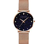 economico -hanna martin movimento giapponese orologio al quarzo con cinturino in acciaio inossidabile oro orologio da donna con quadrante cielo impermeabile