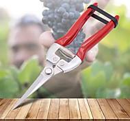abordables -ciseaux d'élagage en acier inoxydable pour le jardinage et la maison