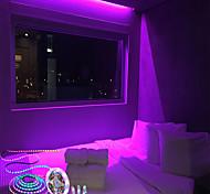 abordables -bande led ic bande lumineuse numérique 5m 2.5m 1m led bande led cordes de pixels corde dc 12v 300leds 150leds 60leds 5050 couleur rgb ws2811 tube programmable et adressable étanche ip67 pcb blanc