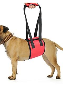 ieftine -Câine Hamuri Siguranță Mată Poliester Negru Rosu Albastru Husky Labrador Border Collie Corgi Beagle Bulldog