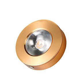 olcso SüllyesztettLED izzók-1db 3 W 330 lm 1 LED gyöngyök Könnyű beszerelni Süllyesztett izzók Mennyezeti izzók LED konyhai világítás Meleg fehér Hideg fehér 220-240 V Kereskedelmi Otthon / iroda Nappali / ebédlő / RoHs / CE