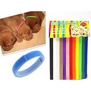 ieftine Câini Gulere, hamuri și Curelușe-Pisici Câine Gulere Ajustabile / Retractabil Curcubeu Nailon Curcubeu 1set