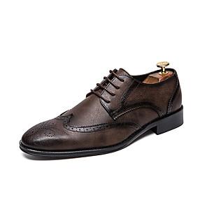 povoljno Muške oksfordice-Muškarci Formalne cipele Koža Proljeće ljeto / Jesen zima Uglađeni Oksfordice Non-klizanje Crn / Braon