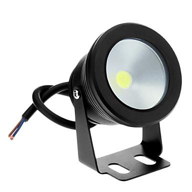 Proiectoare LED lm Alb Rece DC 12 V