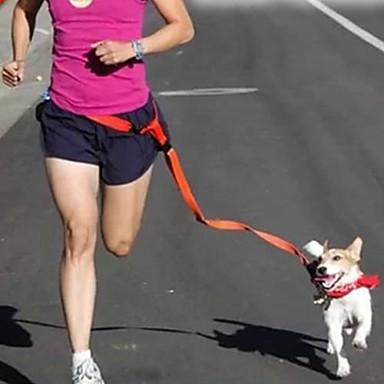 Câine Mâinile Leash Free Ajustabile / Retractabil Alergat Mâini Libere Mată Nailon Verde Albastru Roz