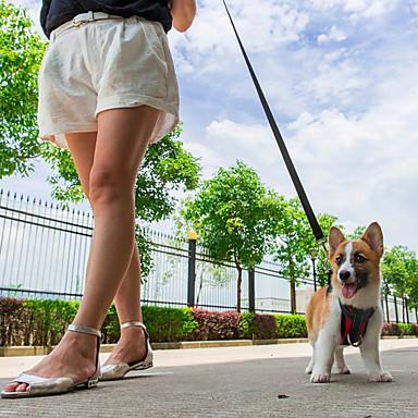 رخيصةأون أطواق ومقاود الكلاب-كلب أربطة ماسك أمان الكلب / ماسك معقد السيارة للكلب مقاوم للماء متنفس قابل للسحبقابل للتعديل لون سادة اسفنج مطاط برتقالي أحمر أخضر