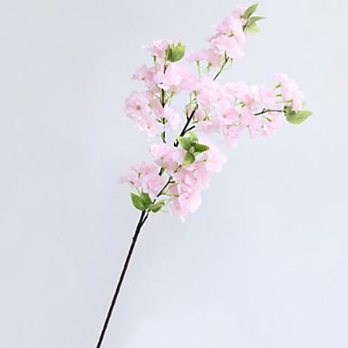 prijava cvijeća trešnje prijava
