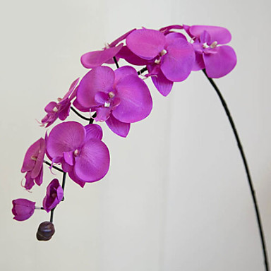زهور اصطناعية 1 فرع كلاسيكي الحديث المعاصر أسلوب بسيط الزهور الخالدة أزهار الطاولة