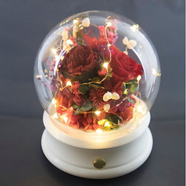 cheap Wedding Gifts-Non-personalized Glass Other LED Lights Her Daily Wear -
