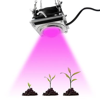 levne LED Žárovky-1ks plné spektrum cob roste světlo 60w vysoká světelná účinnost rostoucí lampa pro rostliny cob fytolamp pro skleníky skleníků pěstovaných uvnitř