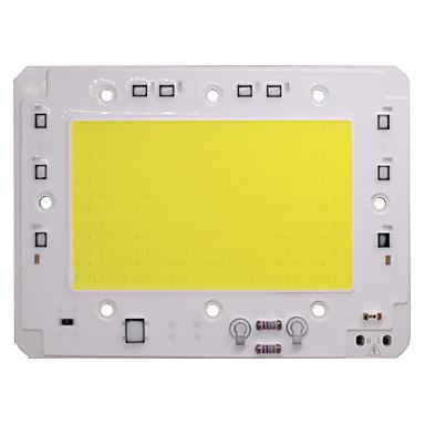 זול אביזרי לד-שבב cob led אור led 110 v 220 v 100 w לבן חם לבן חכם ic אין צורך נהג smd חרוזים אור זרקור זרקור תאורה חיצונית מנורת diy 1 pc