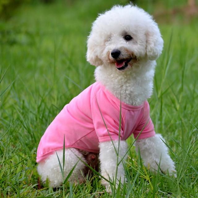 Psy T-shirt Ubrania dla szczeniąt Solidne kolory minimalistyczny styl Ubrania dla psów Ubrania dla szczeniąt Stroje dla psów Żółty Czerwony Niebieski Kostium dla dziewczynki i chłopca Bawełna XS S M