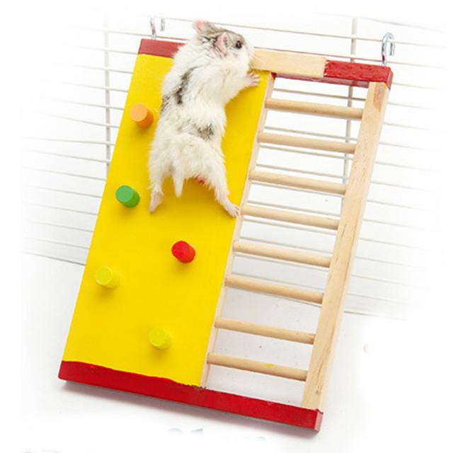 Roedores Hamster Gaiolas Madeira Cor Aleatória