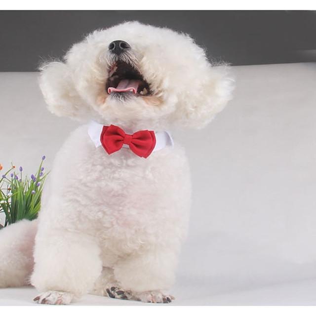 Bow Tie for Men Tuxedo /& Wedding Solid Color Golden Retriever Dogs