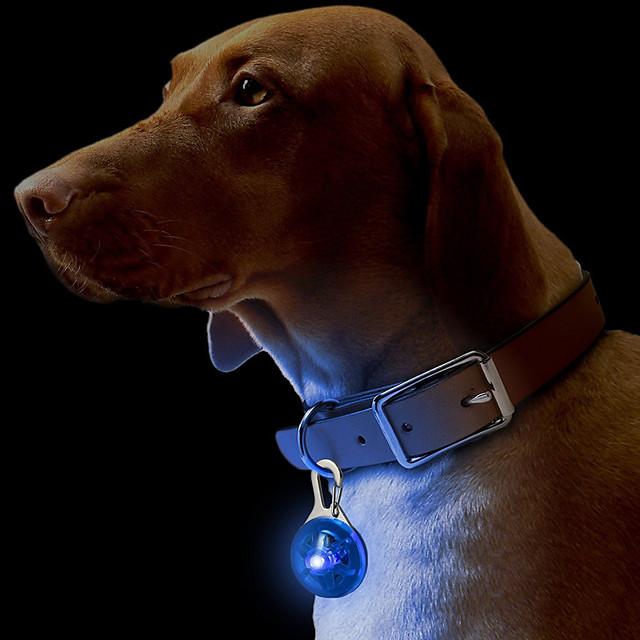 Pisici Câine Gulere Etichete Lumini LED Siguranță Mată Plastic Galben Rosu Roz