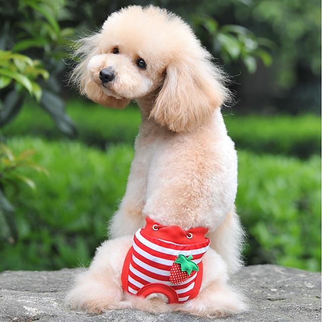 كلاب قطط بنطلونات ملابس الجرو مخطط فاكهة تصميم أنيق تصميم فريد ملابس الكلاب ملابس الجرو ملابس الكلب أبيض أحمر أزرق كوستيوم للفتاة والفتى الكلب قطن S M L XL