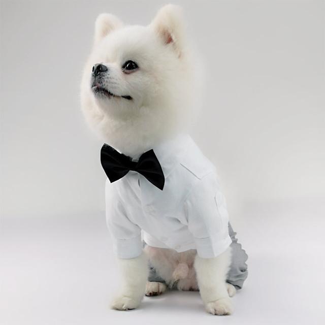 كلاب ملابس السهرة للرجال كنزة قطنية لون سادة عيد ميلاد كاجوال / يومي عيد الميلاد مناسب للحفلات ملابس الكلاب ملابس الجرو ملابس الكلب متنفس أبيض كوستيوم للفتاة والفتى الكلب قطن XS S M L XL XXL