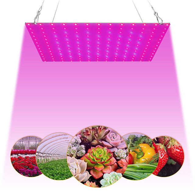 1 pc 81leds 169 leds intérieur LED élèvent des plantes légères lampe de croissance rouge bleu spectre complet pour plante hydroponique intérieure