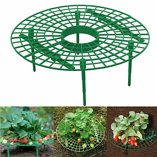 Support de plante support de plantation de fraises fruits escalade accessoires de vigne pilier de fleur support de jardinage outils agricoles