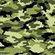 Camouflage Kleur