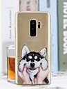 Kılıf Na Samsung Galaxy S9 / S9 Plus / S8 Plus Transparentny / Wzór Osłona tylna Psy Miękka TPU