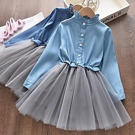 Kids Girls' Basic Blue Color Block Layered Long Sleeve Above Knee Dress Blue