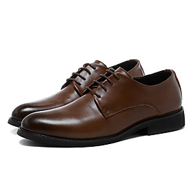 Men's Oxfords Business / Casual Daily Walking Shoes Leather Wear Proof Black / Brown Spring / Fall