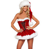 سانتا الدعاوى