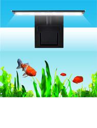 Aquarium-valo