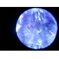 portable microscope 100x avec éclairage LED (2 * aa)