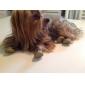 Cachorro Sapatos e Botas Branco Amarelo Rosa Para animais de estimação