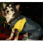 Dog Shirt / T-Shirt Dog Clothes Breathable National Flag American/USA Yellow Green Costume For Pets