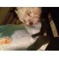 Chien Pulls à capuche Vêtements pour Chien Solide Costume Pour les animaux domestiques