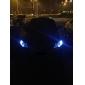T10 13*5050 SMD White LED CANBUS Car Signal Lights (2-Pack, DC 12V)