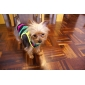 Dog T-Shirt - XS / S / M / L / XL / XXL - Summer - Yellow Cotton